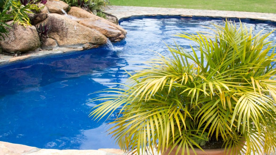 Looking To Landscape Your Pool Area But Don T Have Time Or E Plant Potted Plants Can Transform A Boring Into An Oasis Outdoor