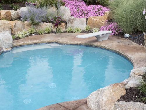 garden-pool-with-diving-board